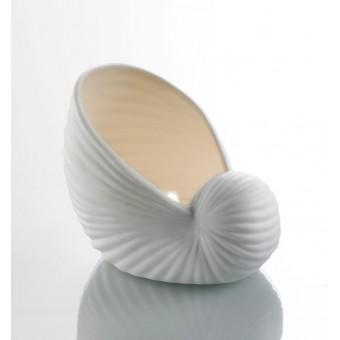 Žvakidė, porcelianinė kriauklė NAUTILUS